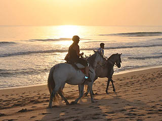 Horse Riding in the beach or in the Natural Park