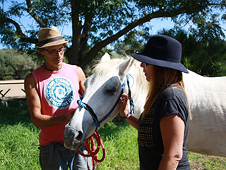Natural Horsemanship and training the horses