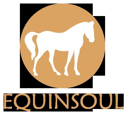 EquinSoul | Paseos por la playa y rutas a caballo en Zahora, Caños de Meca, Cádiz, Andalucia | Horse Riding in the beach
