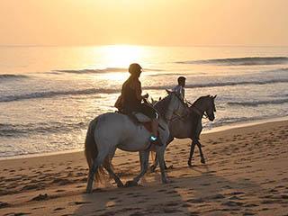 Equinsoul Paseos a caballo por la playa en Cádiz